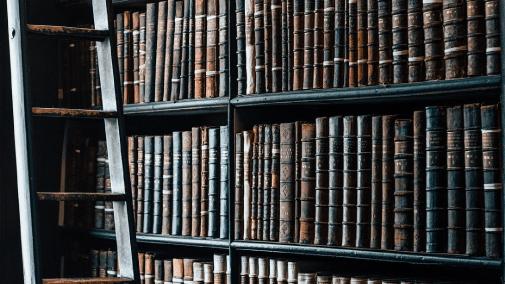 Book publications on shelves