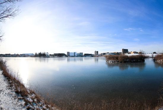 University at Buffalo Pond at Winter